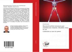 Portada del libro de Reconstruction osseuse par membrane induite. Modèle chez le rat