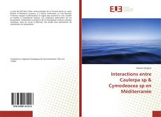 Couverture de Interactions entre Caulerpa sp & Cymodeocea sp en Méditerranée