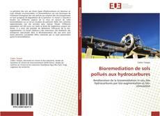 Couverture de Bioremediation de sols pollués aux hydrocarbures
