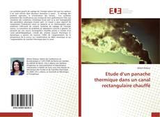 Bookcover of Etude d'un panache thermique dans un canal rectangulaire chauffé