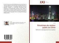 Bookcover of Privatision du secteur public en Chine