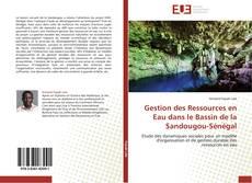 Portada del libro de Gestion des Ressources en Eau dans le Bassin de la Sandougou-Sénégal