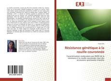 Bookcover of Résistance génétique à la rouille couronnée