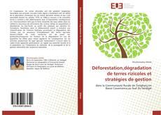 Portada del libro de Déforestation,dégradation de terres rizicoles et stratégies de gestion