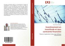 Investissement en incertitude et sous contrainte financière kitap kapağı
