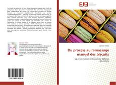 Bookcover of Du process au ramassage manuel des biscuits