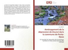 Copertina di Aménagement de la dépression de Zounvi dans la commune de Porto-Novo