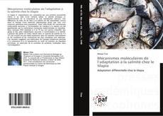 Bookcover of Mécanismes moléculaires de l'adaptation à la salinité chez le tilapia