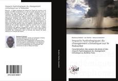 Buchcover von Impacts hydrologiques du changement climatique sur le Nakanbé