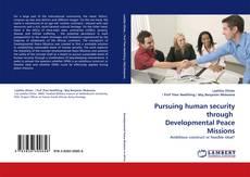 Copertina di Pursuing human security through Developmental Peace Missions