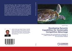 Bookcover of Developing Dynamic Capabilities for Sustainable Competitive Advantage