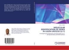 Bookcover of MOLECULAR IDENTIFICATION OF GENES IN LIGON LINTLESS (Li-1)