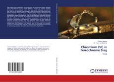 Bookcover of Chromium (VI) in Ferrochrome Slag