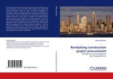 Revitalising construction project procurement kitap kapağı