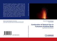 Bookcover of Combustion of Natural Gas in Turbulent Fluidized Beds