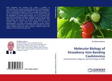 Portada del libro de Molecular Biology of Strawberry Vein Banding Caulimovirus