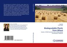 Bookcover of Biodegradable Plastic from Wheat