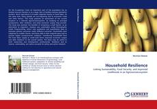 Couverture de Household Resilience