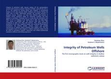 Integrity of Petroleum Wells Offshore kitap kapağı