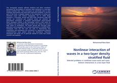 Buchcover von Nonlinear interaction of waves in a two-layer density stratified fluid
