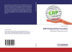 Обложка ERP Productivity Function