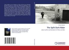 Bookcover of The Split Dark Rider