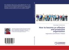 Bookcover of How to become an effective and productive organization