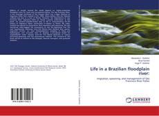 Buchcover von Life in a Brazilian floodplain river: