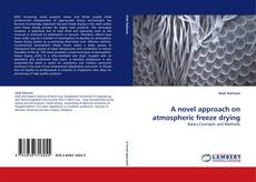 Bookcover of A novel approach on atmospheric freeze drying