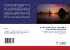 Carbon Dioxide in Terrestrial & Marine Environment的封面