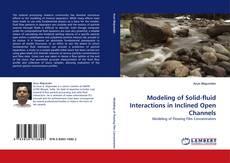 Modeling of Solid-fluid Interactions in Inclined Open Channels kitap kapağı