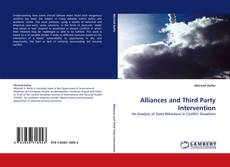 Bookcover of Alliances and Third Party Intervention