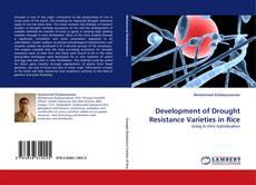 Development of Drought Resistance Varieties  in Rice的封面