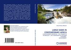 Bookcover of LARGE DAMS IN CONTEMPORARY AFRICA