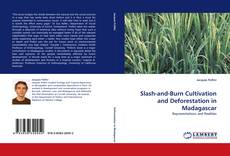 Copertina di Slash-and-Burn Cultivation and Deforestation in Madagascar