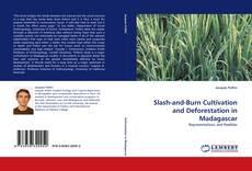 Slash-and-Burn Cultivation and Deforestation in Madagascar kitap kapağı