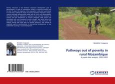 Bookcover of Pathways out of poverty in rural Mozambique