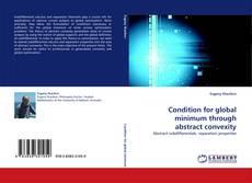 Portada del libro de Condition for global minimum through abstract convexity