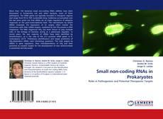 Bookcover of Small non-coding RNAs in Prokaryotes