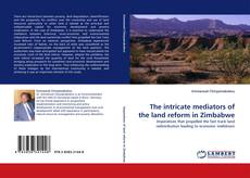 Bookcover of The intricate mediators of the land reform in Zimbabwe