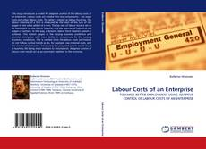 Bookcover of Labour Costs of an Enterprise