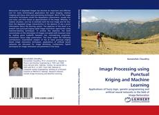 Bookcover of Image Processing using Punctual Kriging and Machine Learning