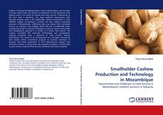 Bookcover of Smallholder Cashew Production and Technology in Mozambique