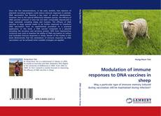 Modulation of immune responses to DNA vaccines in sheep的封面