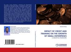 Обложка IMPACT OF CREDIT AND TRAINING ON THE GROWTH OF SMALL ENTERPRISES