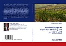 Bookcover of Poverty Linkages to Productive Efficiency and Access to Land