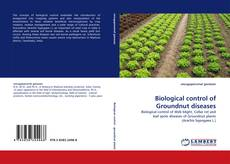 Bookcover of Biological control of Groundnut diseases