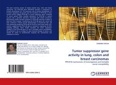 Couverture de Tumor suppressor gene activity in lung, colon and breast carcinomas