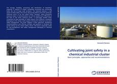 Обложка Cultivating joint safety in a chemical industrial cluster