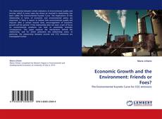 Economic Growth and the Environment: Friends or Foes? kitap kapağı